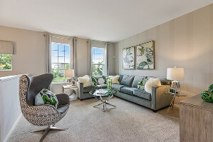 Living Room, sample furnishings